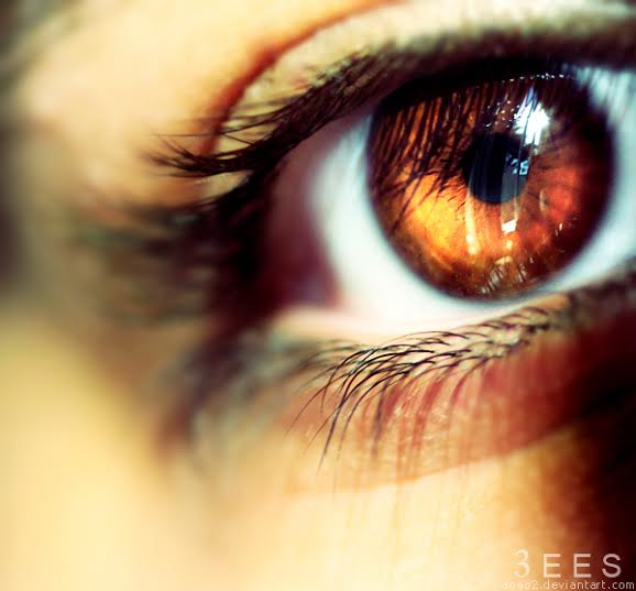 brown_eye